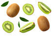 canvas print picture - kiwi fruit with slices and green leaves isolated on a white background. top view