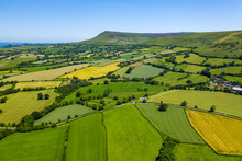 Aerial View Of Green Fields An...