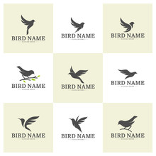 Set Of Bird Logo Design Vector Template. Bird Icon Vector Concept