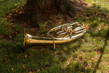 A Brass Horn Lies In The Grass...