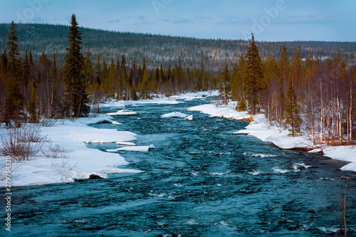 Melting snow and flowing cold blue river in the snow next to the forest. Arrival of spring