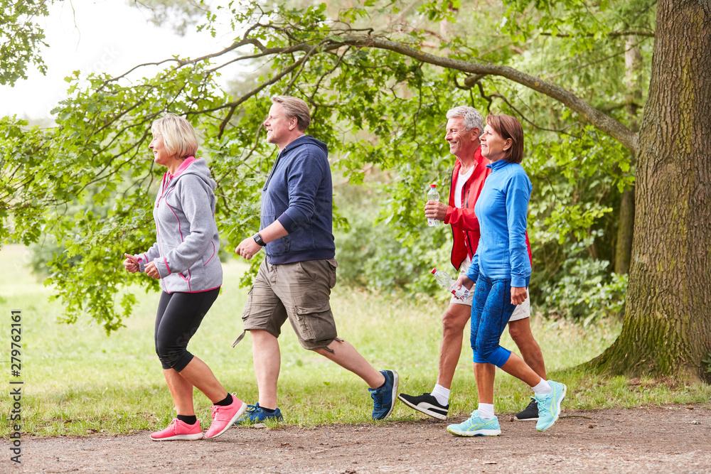 Fototapety, obrazy: Senior group walking in nature
