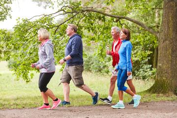 Senior group walking in nature