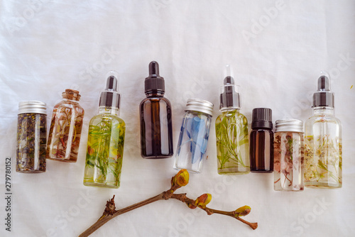 Obraz Transparent Bottles of essential oil with fresh herbs. - fototapety do salonu