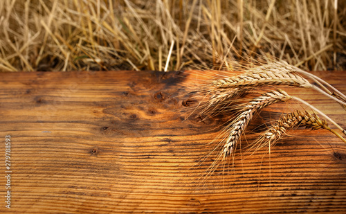 Golden ears of wheat on old wood