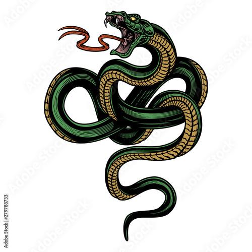 Valokuva Snake
