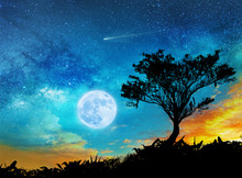 A Magic Night Lanscape With Starry Sky