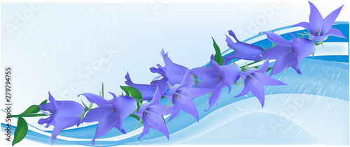 bluebell flowers decoration on blue background Canvas Print