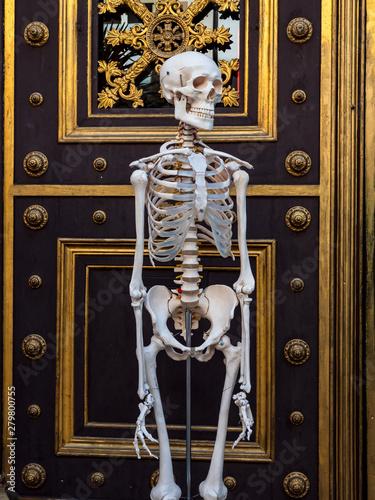 Fényképezés The skeleton faces an entrance to the building on the street of Basel