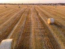 Aerial View Of A Field Full Of...