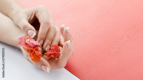 Wall Murals Manicure Delicate hands holding red flowers with copyspace