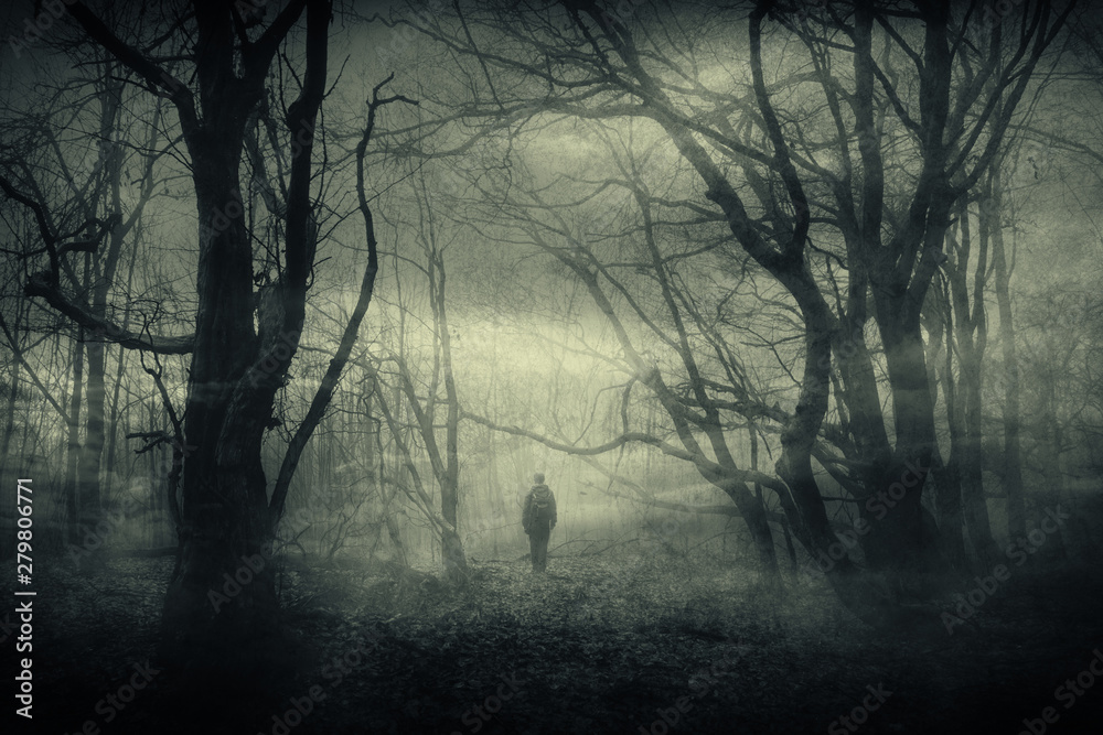 Fototapety, obrazy: horror forest landscape, surreal haunted woods with scary silhouette at night