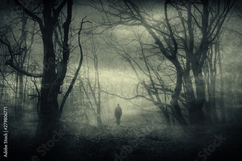 Fototapeten Wald horror forest landscape, surreal haunted woods with scary silhouette at night