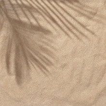 Summer Beach Day Scene With Tropical Palms Shadow On Sand Background. Minimal Sunlight Tropical Flat Lay Arrangement.