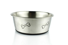 Empty Metal Dog Bowl Isolated On White Background.