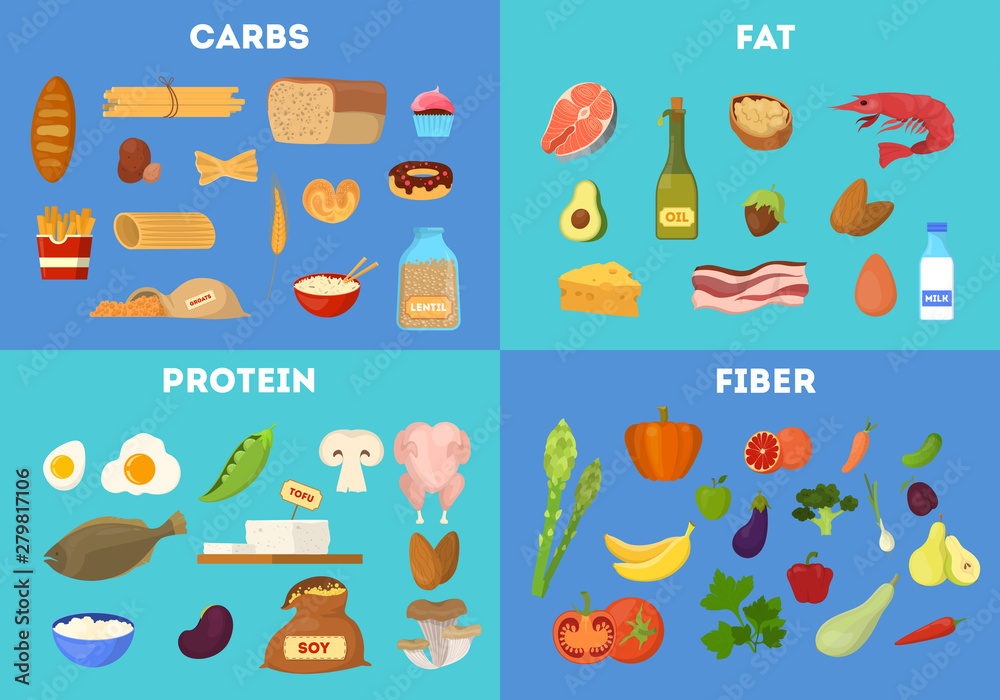 Fototapety, obrazy: Food groups set. Protein and fiber food