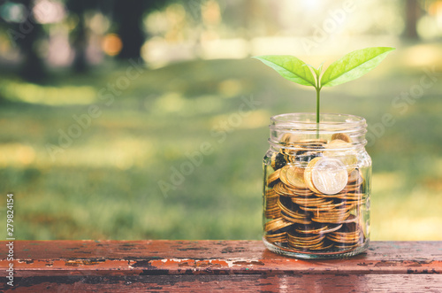Fotografie, Obraz  green plant growing on golden coin in glass jar on wood table in park with blur nature background