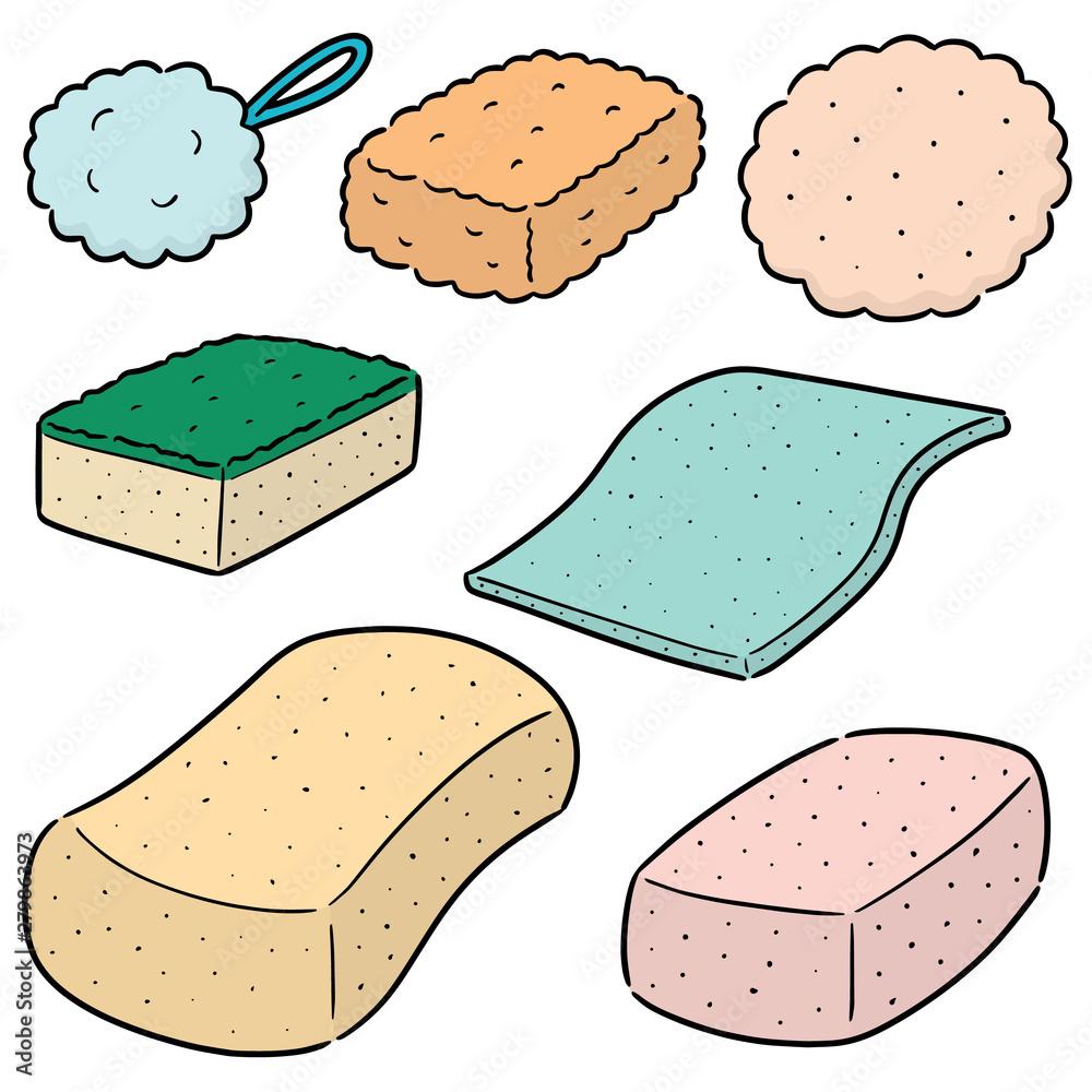Fototapeta vector set of sponge