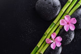 Fototapeta Kwiaty - pink flower with black stones and bamboo grove on Wet black background. Spa Concept