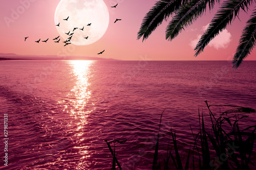 Montage in der Fensternische Hochrote Fantasy landscape with super moon and flying birds on the coast at sunset