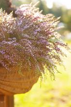 Beautiful Fresh Bouquet Of A B...