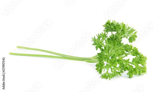 Fotografia  Fresh green organic parsley on white background