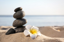 Stack Of Dark Stones And Beautiful Flower On Sandy Beach Near Sea, Space For Text. Zen Concept