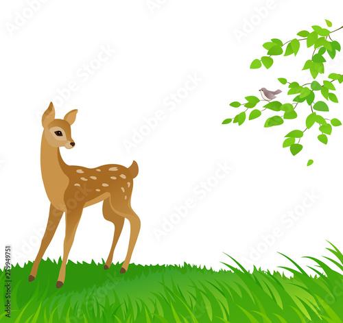 Cartoon drawing of a young deer, nature background Fototapeta