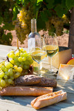 White wine with cheese, bread and grapes in vineyard