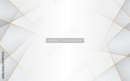 Obraz Modern abstract light silver background vector. Elegant concept design with golden line. - fototapety do salonu