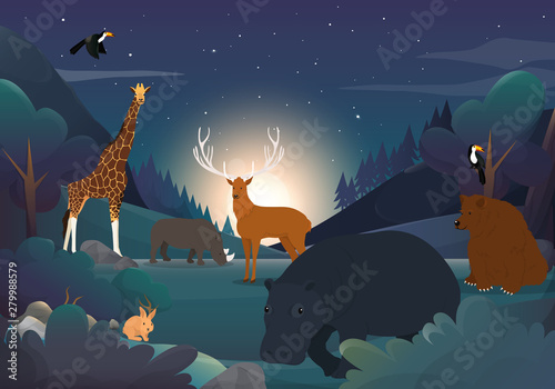 Wild Animal And The Forest At Night
