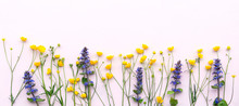 Vivid Yellow And Violet Wildflowers Arrangement. Buttercups And Sage On A Pale Pink Background. Copy Space For Text. Idea Of A Seasonal Greeting Card Or Banner With Meadow Flowers