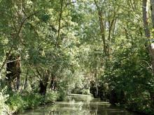 Balade Dans Le Marais Poitevin. Le Long D'un Canal, Sous Les Frènes Et Peupliers Verdoyant