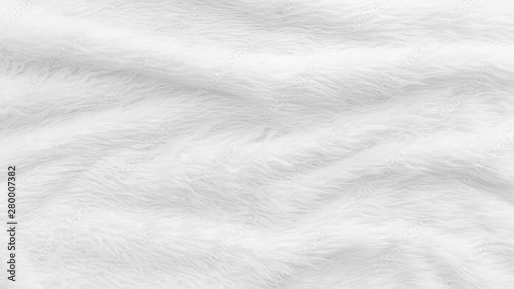 Fototapeta Fur background with white soft fluffy furry texture hair cloth of sheepskin for blanket and carpet interior decoration