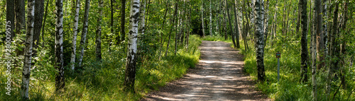 Path in Finnish forest panorama HDR large Canvas Print