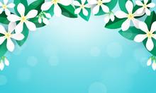 Jasmine Flower Background Vector Illustration. Flower Frame On Blue Bokeh Background