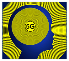 5G Technology In Early Childhood. The Exposure Of Young Children To Emitting Devices Is Damaging The Brain Development Due To Their Smaller Skulls
