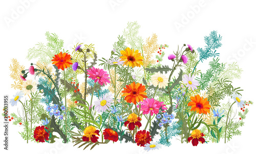 Horizontal autumn's border: marigold, thistles, gerbera, daisy flowers, small green twigs, red berries on white background. Digital draw, illustration in watercolor style, panoramic view, vector