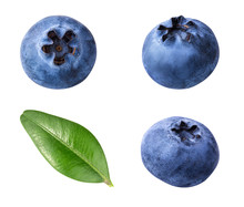 Fresh Blueberry With Leaf Isolated On White Background With Clipping Path