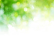 Leinwanddruck Bild - Green background for people who want to use graphics advertising.