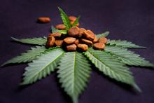 CBD Dog Treats And Cannabis Le...