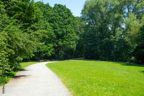 Fotografía  Park landscape. Summer green meadow with long lane