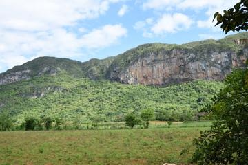Fototapeta na wymiar Vinales Tal auf Kuba