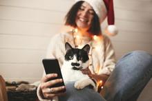 Cute Cat Looking At Phone Scre...
