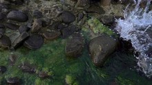 Slow Motion Of Sea Wave On Coastal Stones Covered With Green Algae. Close-up