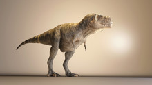 T Rex In The Studio