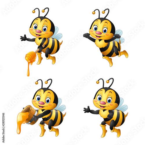 Obraz Cartoon bee with honey collections set - fototapety do salonu