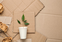 Green Plant In Cup And Crumpled Paper On Carton, Top View With Space For Text