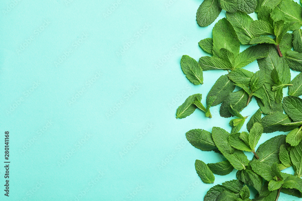 Fototapety, obrazy: Fresh green mint leaves on blue background, flat lay. Space for text