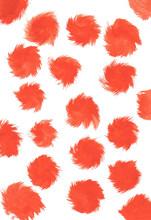 Orange Brush Strokes Paint Splatters On A White Background